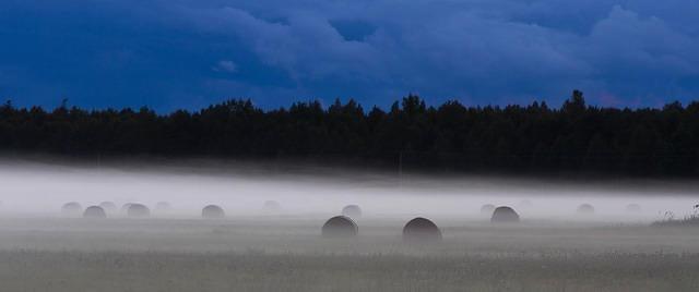 Pildiotsingu eesti lipp maastik tulemus
